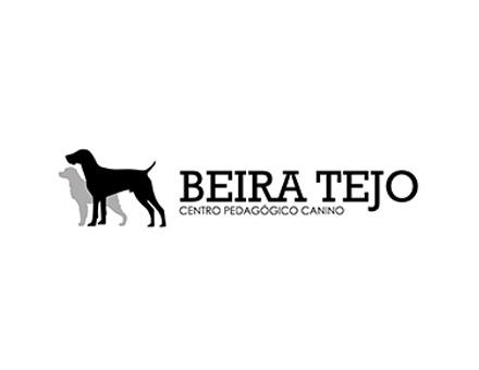 BEIRA TEJO
